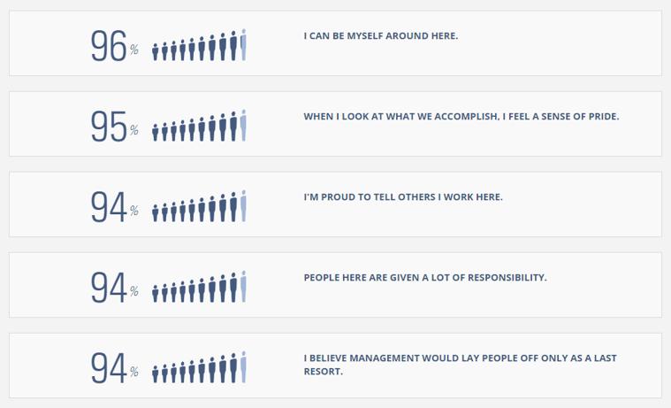 DVL employee feelings by the numbers