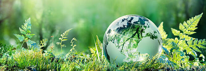 sustainability-header-bg-700x242