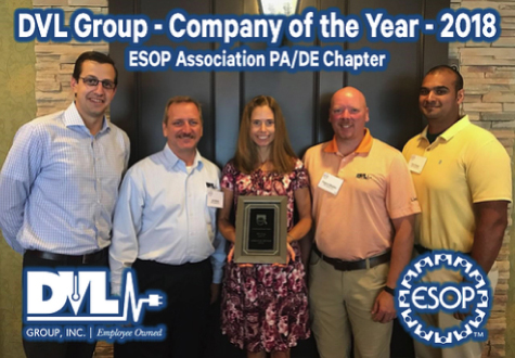 dvl group company of the year